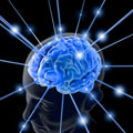 vreemdgaan hersenen