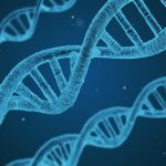 Zit vreemdgaan in de genen?