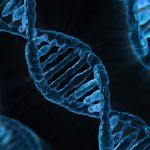 Volgens Victor Reinier zit vreemdgaan in de menselijke genen