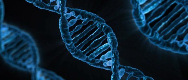 vreemdgaan in de menselijke genen